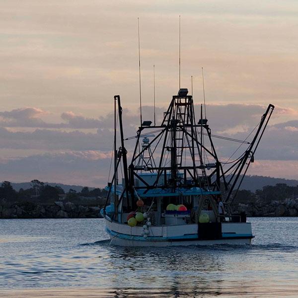 Sunset Trawler © RDA Northern Rivers