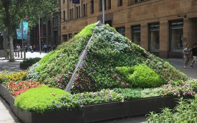 City Greening and Urban Agriculture